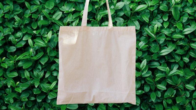 reusable-bag-2-e1567796813759-800x450.jpg